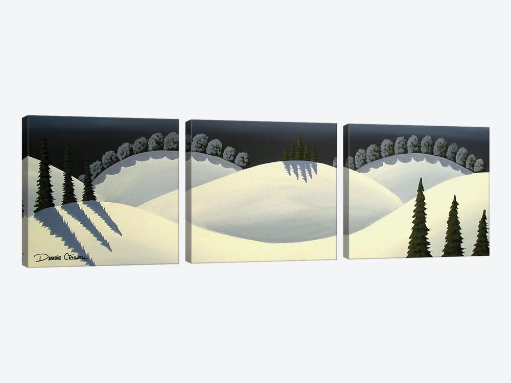 Snow Covered by Debbie Criswell 3-piece Canvas Art