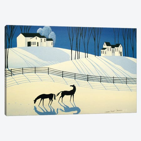 The Longest Shadows Of Winter Canvas Print #DEC174} by Debbie Criswell Canvas Artwork