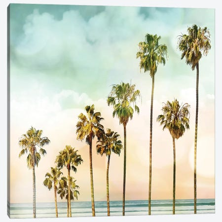 Beach Palms I Canvas Print #DED4} by Devon Davis Canvas Artwork