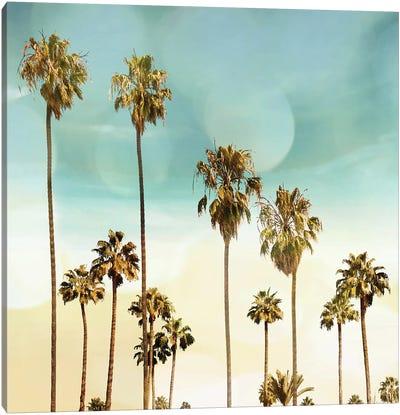 Beach Palms II Canvas Art Print