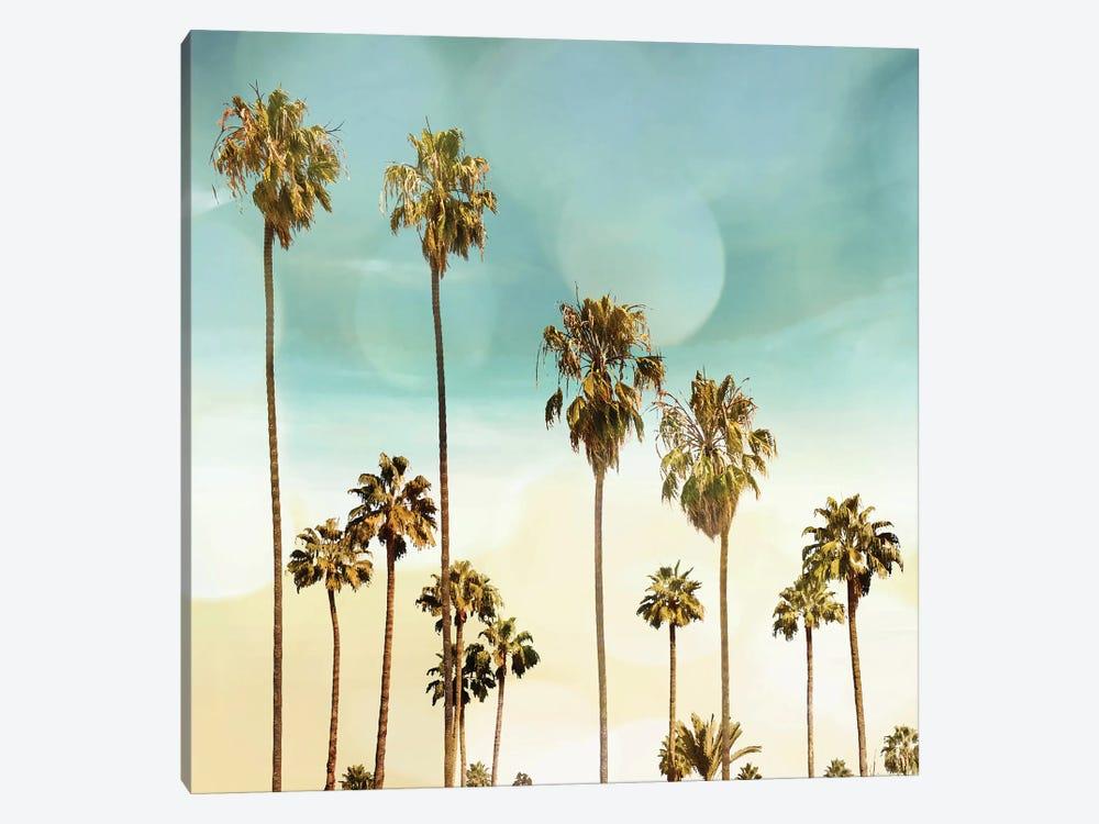 Beach Palms II by Devon Davis 1-piece Canvas Artwork