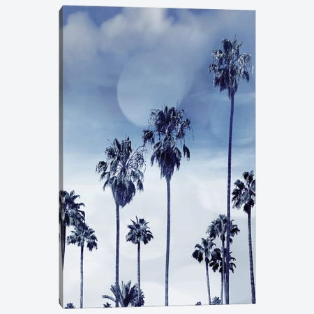 Beach Palms Indigo I Canvas Print #DED7} by Devon Davis Canvas Art