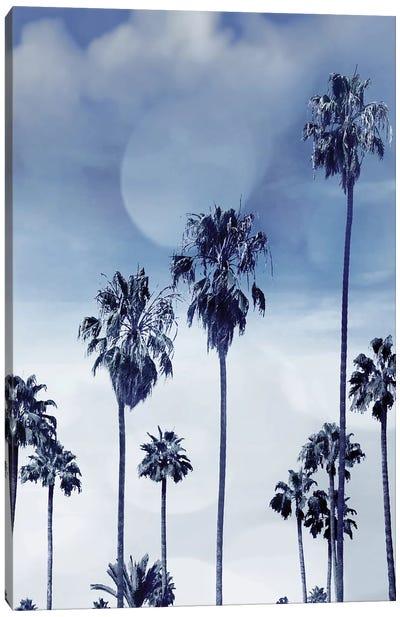 Beach Palms Indigo I Canvas Art Print