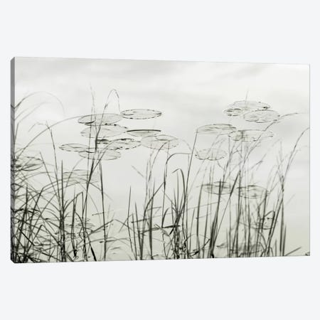 Silver Lake Lillies Canvas Print #DEL107} by Danita Delimont Art Print