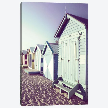 Beach Neighbors Canvas Print #DEL10} by Danita Delimont Canvas Art