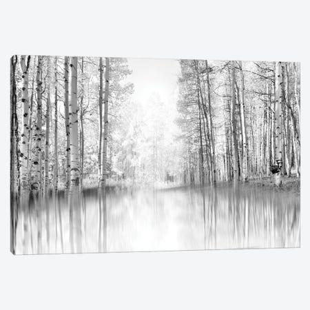 Aspen Reflection Canvas Print #DEL119} by Danita Delimont Canvas Art Print