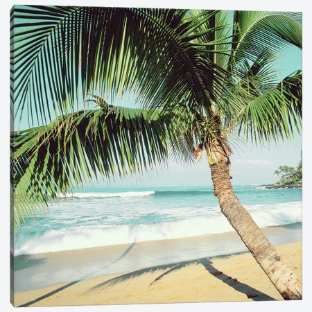 Napili Beach Canvas Print #DEL131} by Danita Delimont Canvas Art Print