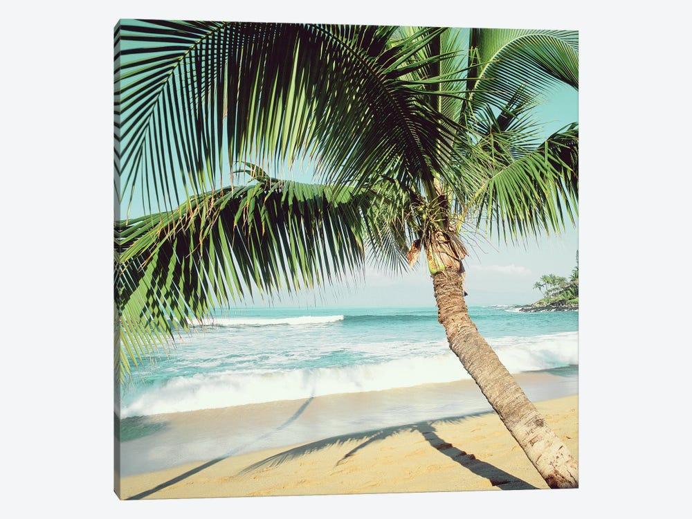 Napili Beach by Danita Delimont 1-piece Art Print