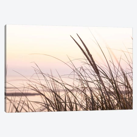 Cape Dune Morning Canvas Print #DEL146} by Danita Delimont Canvas Art Print
