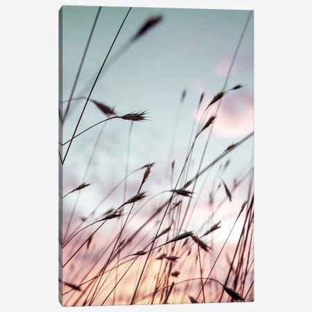 Falls Park Sunset Canvas Print #DEL148} by Danita Delimont Canvas Wall Art