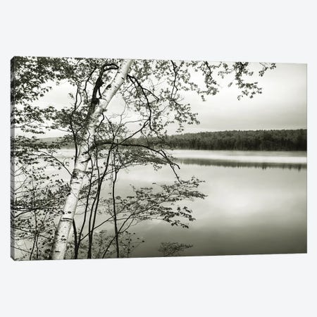 Adirondack Reflections Canvas Print #DEL156} by Danita Delimont Canvas Art