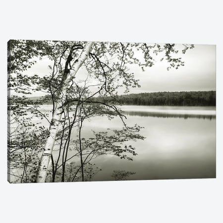 Adirondack Reflections Canvas Print #DEL156} by Danita Delimont Canvas Art