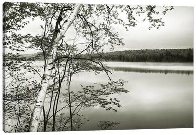 Adirondack Reflections Canvas Art Print