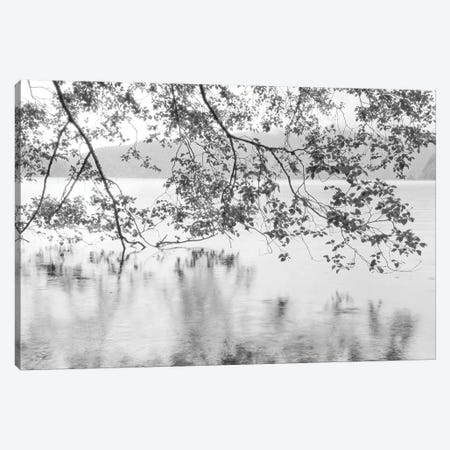 Lake Crescent Canvas Print #DEL162} by Danita Delimont Canvas Art