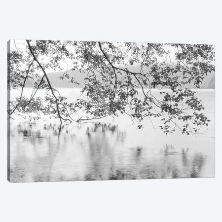 Lake Crescent Canvas Print #DEL162} by Danita Delimont Canvas Art