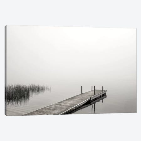 Morning Mist Canvas Print #DEL164} by Danita Delimont Art Print