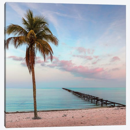 Isle Of Youth Canvas Print #DEL176} by Danita Delimont Canvas Art
