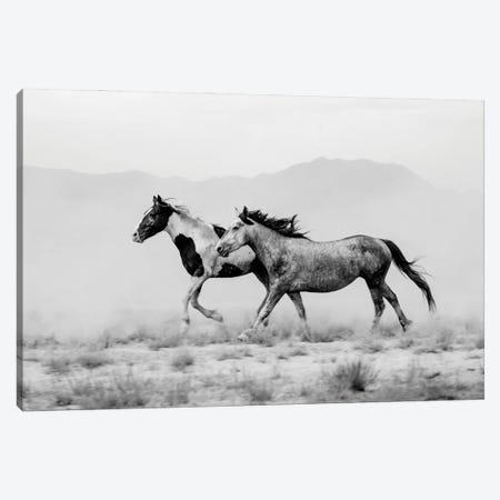 Tooele County Duo Canvas Print #DEL210} by Danita Delimont Canvas Wall Art