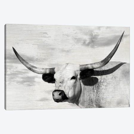 Buttercup Canvas Print #DEL215} by Danita Delimont Canvas Print