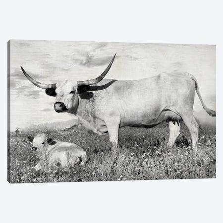 Buttercup and Bluebonnet Canvas Print #DEL216} by Danita Delimont Canvas Print