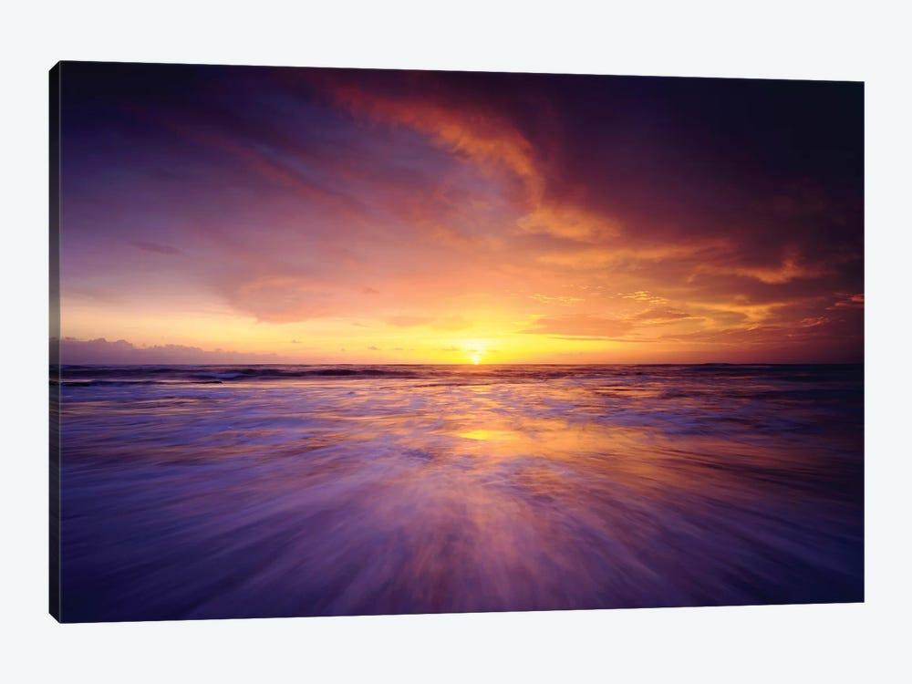 Regal Ocean by Danita Delimont 1-piece Canvas Art Print