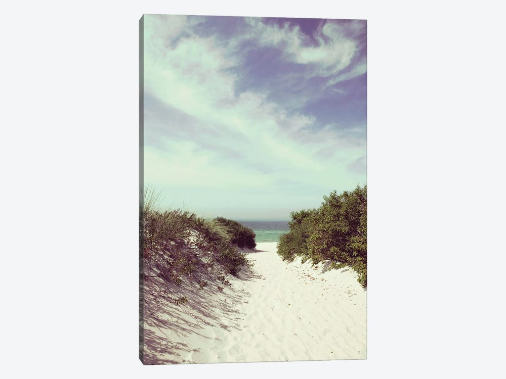 Lambert's Cove by Danita Delimont 1-piece Canvas Wall Art