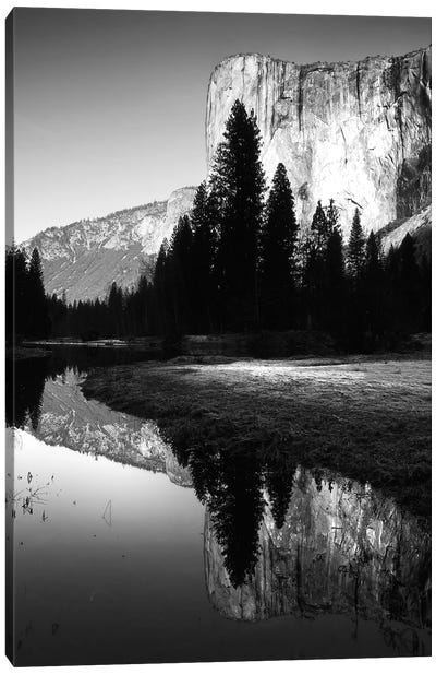 Snake River Reflection II Canvas Art Print