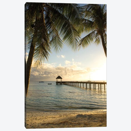 Pier And Palm Canvas Print #DEL55} by Danita Delimont Canvas Art Print