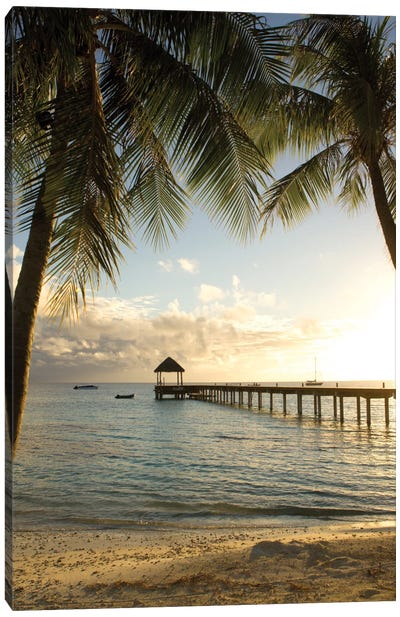 Pier And Palm Canvas Art Print