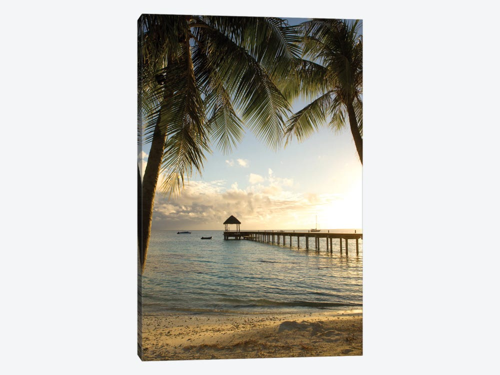 Pier And Palm by Danita Delimont 1-piece Canvas Art Print