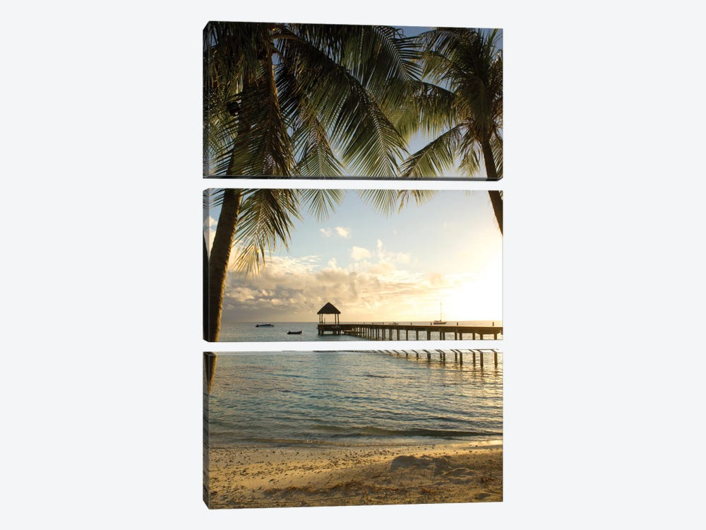 Pier And Palm by Danita Delimont 3-piece Art Print