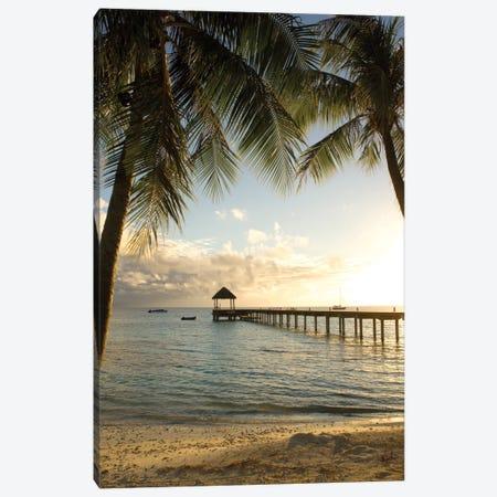 Pier And Palm Canvas Print #DEL55} by Danita Delimont Canvas Art Print