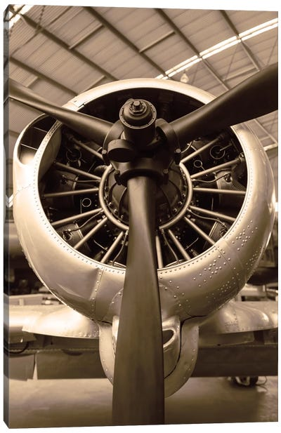 WW II Fighter Canvas Print #DEL5