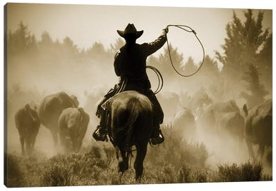 Rope And Ride Canvas Art Print