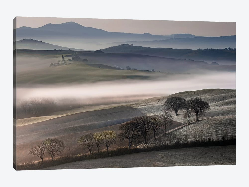 Frosty Dawn by Danita Delimont 1-piece Canvas Print