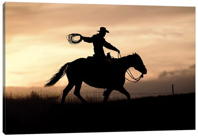 Rope And Ride I Canvas Art Print