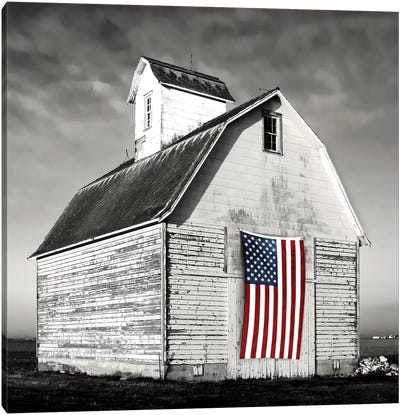 Modern Barn I Canvas Art Print