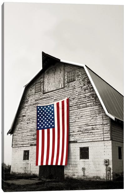 Modern Barn II Canvas Art Print