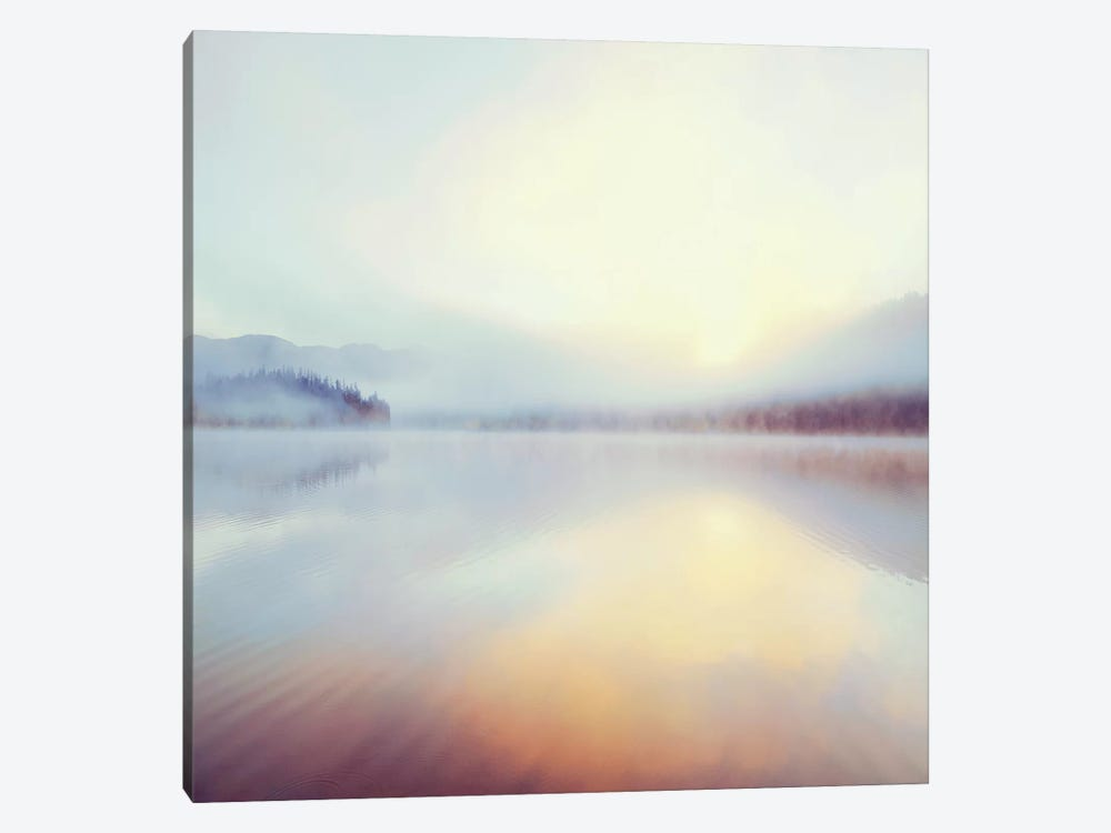 Sunrise Over Beaver Lake by Danita Delimont 1-piece Canvas Artwork