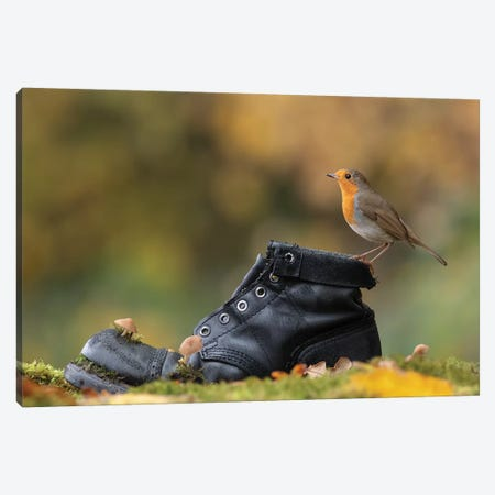 Autumnal Robin On Old Boot Canvas Print #DEM7} by Dean Mason Canvas Art Print