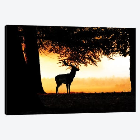 Sunrise Fallow 3-Piece Canvas #DEM82} by Dean Mason Canvas Wall Art