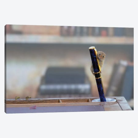 The Library Mouse Canvas Print #DEM96} by Dean Mason Canvas Wall Art