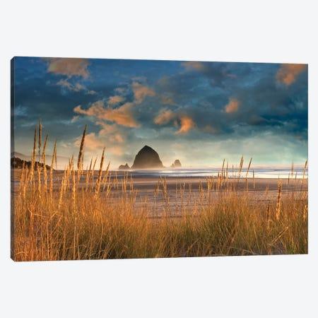 Dune Grass Sunrise Canvas Print #DEN104} by Dennis Frates Canvas Wall Art