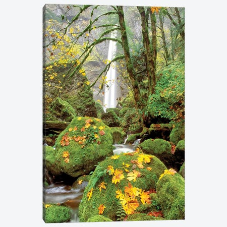 Elowah Falls Canvas Print #DEN108} by Dennis Frates Art Print