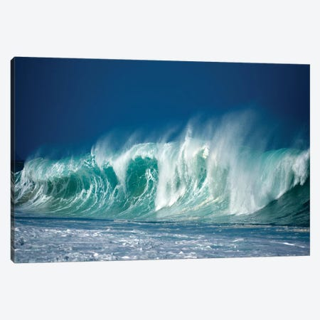 Enormous Wave I Canvas Print #DEN114} by Dennis Frates Art Print