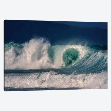 Enormous Wave II Canvas Print #DEN115} by Dennis Frates Art Print