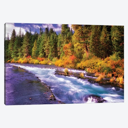 Fall Stream Canvas Print #DEN116} by Dennis Frates Art Print