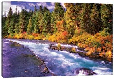 Fall Stream Canvas Art Print