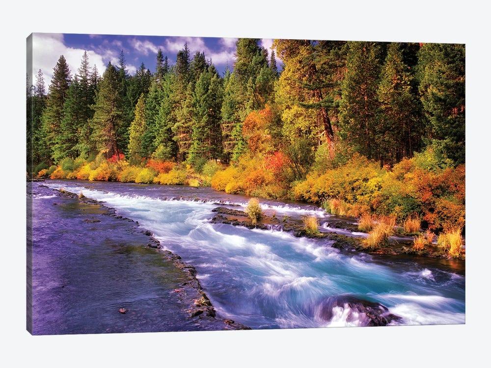 Fall Stream by Dennis Frates 1-piece Canvas Wall Art