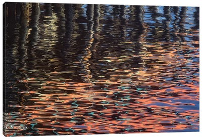 Abstract Reflection Canvas Art Print